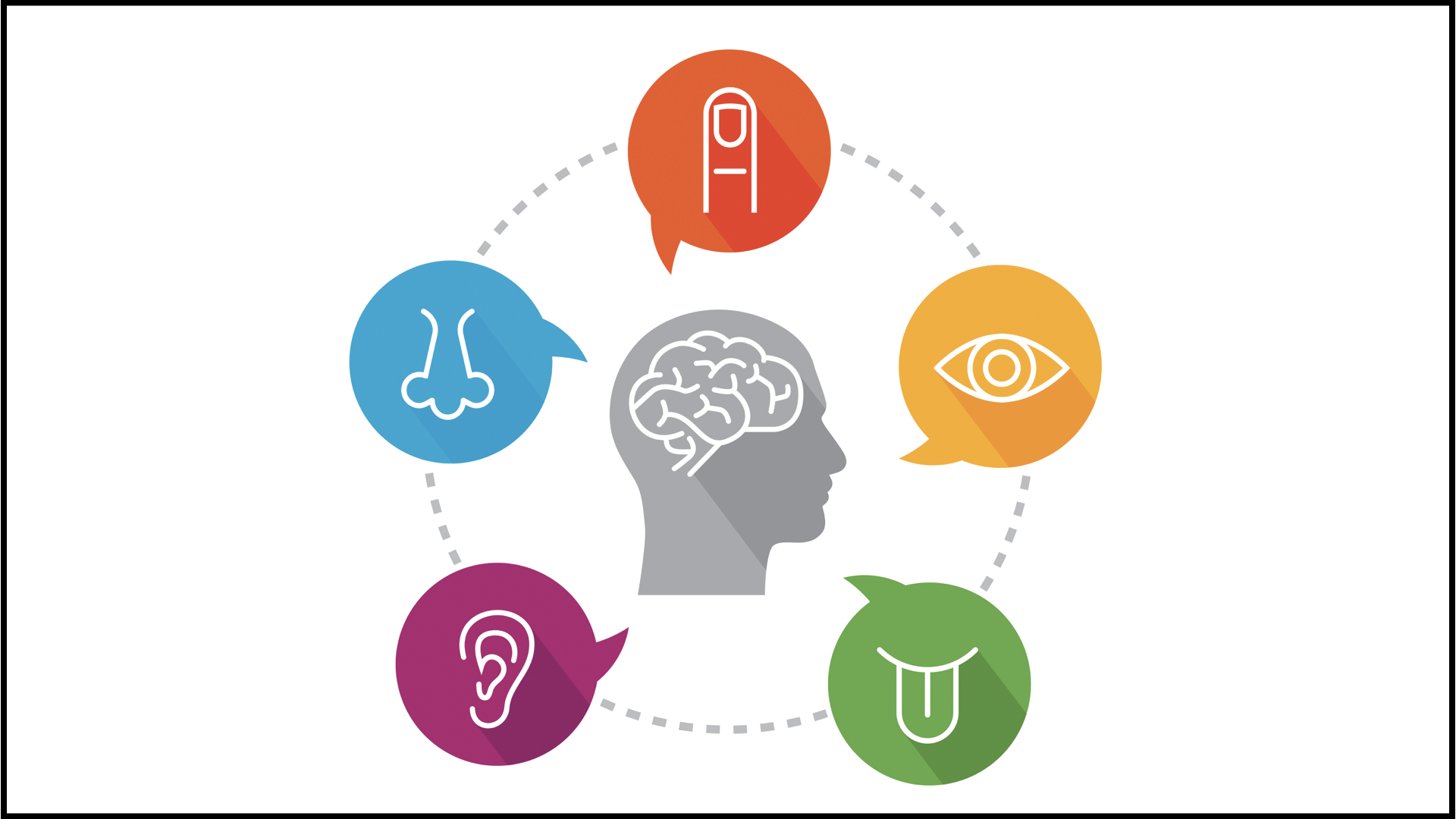 How Sensory Processing Issues Affect >> Research Foss Feig Laboratory