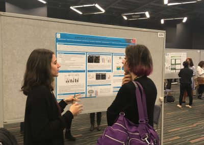 Natalie Burlant presents our research at INSAR 2019