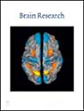 Brain Research Publication Cover