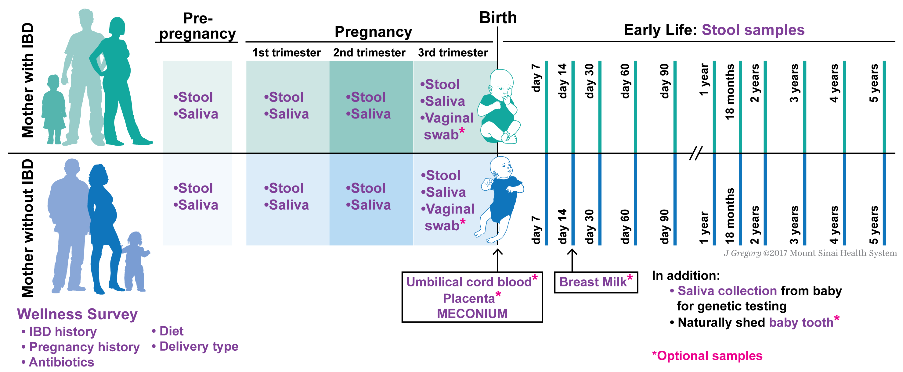 early pregnancies background of the study Background as maternal fever affects approximately 6–8% of early pregnancies, it is important to expand upon previous observations of an association between maternal fever and birth defects methods we analyzed data from the national birth defects prevention study, a multistate, case-control study of major structural birth defects.